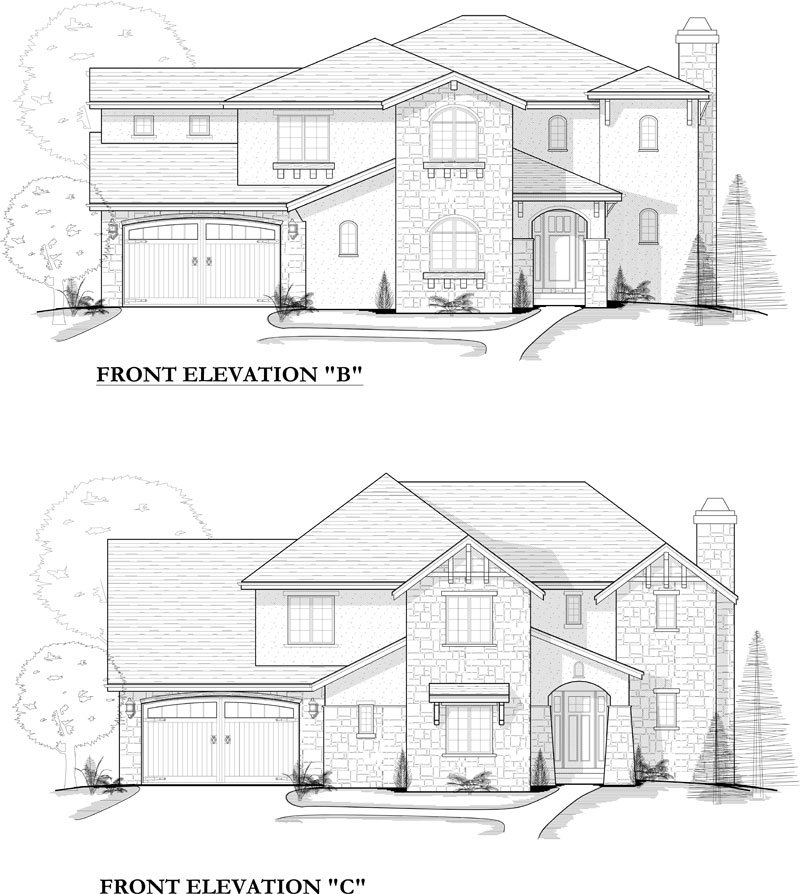hayden model plan elevation options