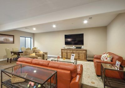Lower Living Room 2