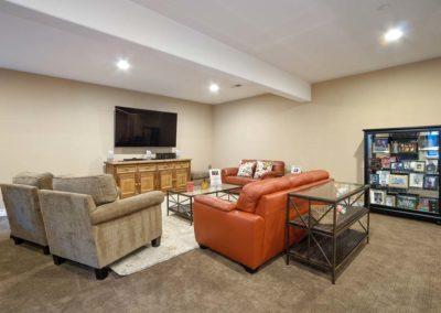 Lower Living Room 3